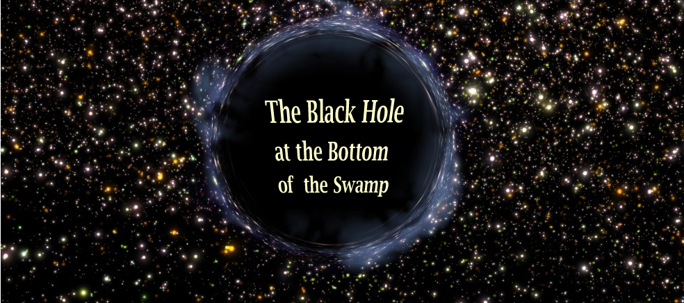 The Black Hole at the Bottom of the Swamp